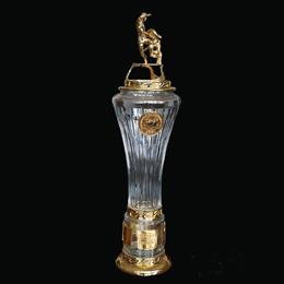 новый кубок Победителя Первенства России по футболу Российской Футбольной Премьер Лиги